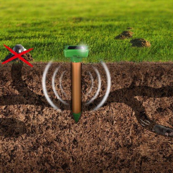 Répulsif solaire de luxe contre taupes et fourmis